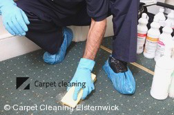Carpet Cleaning Elsternwick 3185