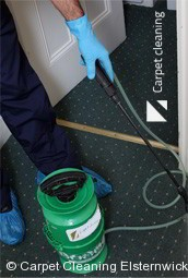 Professional Carpet Cleaners Elsternwick 3185